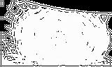 Imprimer le coloriage : Araignée, numéro 147159