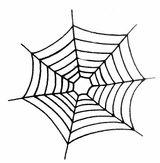 Imprimer le coloriage : Araignée, numéro 167666