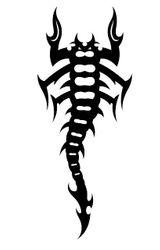 Imprimer le coloriage : Scorpion, numéro 147600