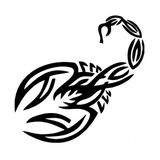 Imprimer le coloriage : Scorpion, numéro 26229