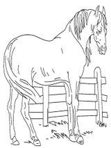 Imprimer le coloriage : Cheval, numéro 128619