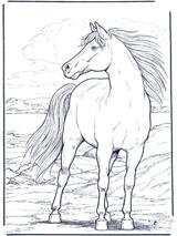 Imprimer le dessin en couleurs : Cheval, numéro 20905