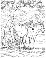 Imprimer le coloriage : Cheval, numéro 3756