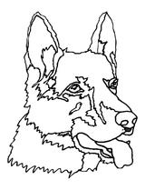 Imprimer le coloriage : Chien, numéro 4331