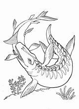 Imprimer le coloriage : Dinosaures, numéro 1fdf0640