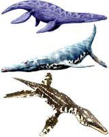 Imprimer le dessin en couleurs : Dinosaures, numéro 208778