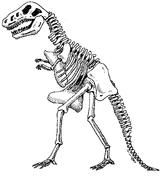 Imprimer le coloriage : Dinosaures, numéro 209551