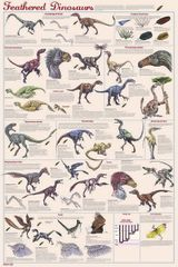 Imprimer le dessin en couleurs : Dinosaures, numéro 234947
