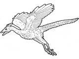 Imprimer le coloriage : Dinosaures, numéro 261527
