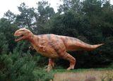 Imprimer le dessin en couleurs : Dinosaures, numéro 670598