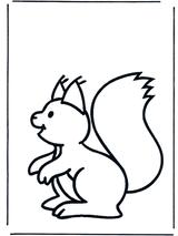 Imprimer le dessin en couleurs : Ecureuil, numéro 276157