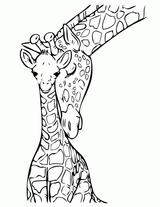 Imprimer le coloriage : Girafe, numéro 1ebaac70