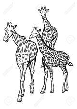 Imprimer le coloriage : Girafe, numéro 269e2d3b