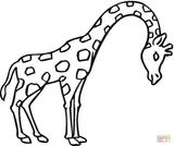 Imprimer le coloriage : Girafe, numéro 28d63942