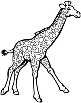 Imprimer le coloriage : Girafe, numéro bb8fe665