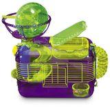 Imprimer le dessin en couleurs : Hamster, numéro 157290
