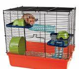 Imprimer le dessin en couleurs : Hamster, numéro 157305