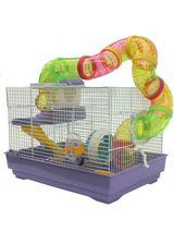 Imprimer le dessin en couleurs : Hamster, numéro 157313