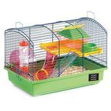 Imprimer le dessin en couleurs : Hamster, numéro 169519