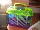 Imprimer le dessin en couleurs : Hamster, numéro 194383