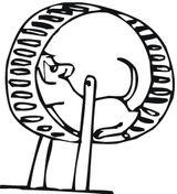 Imprimer le dessin en couleurs : Hamster, numéro 19525
