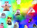 Imprimer le dessin en couleurs : Hamster, numéro 21075