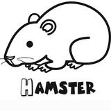Imprimer le coloriage : Hamster, numéro 3405