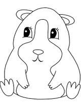 Imprimer le coloriage : Hamster, numéro 53955