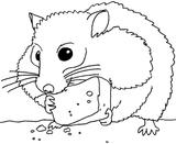Imprimer le coloriage : Hamster, numéro 9706