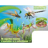 Imprimer le dessin en couleurs : Insectes, numéro 119482