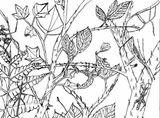 Imprimer le coloriage : Insectes, numéro 130359