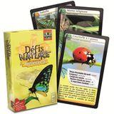 Imprimer le dessin en couleurs : Insectes, numéro 158368