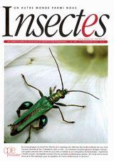 Imprimer le dessin en couleurs : Insectes, numéro 15896cf9