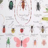 Imprimer le dessin en couleurs : Insectes, numéro 169733