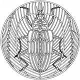 Imprimer le coloriage : Insectes, numéro 64575