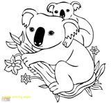 Imprimer le coloriage : Koala, numéro 2154f8c1