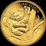 Imprimer le dessin en couleurs : Koala, numéro 622799
