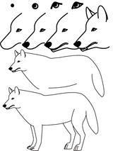 Imprimer le dessin en couleurs : Loup, numéro 117403