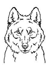 Imprimer le coloriage : Loup, numéro 128413