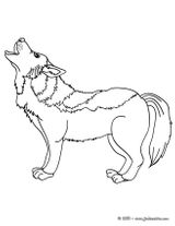 Imprimer le coloriage : Loup, numéro 141830