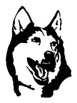 Imprimer le coloriage : Loup, numéro 145910