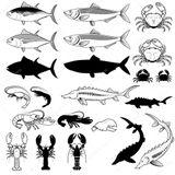 Imprimer le coloriage : Mollusques, numéro 3579b224