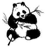 Imprimer le coloriage : Panda, numéro 104543