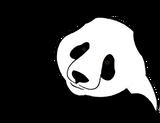Imprimer le coloriage : Panda, numéro 104561