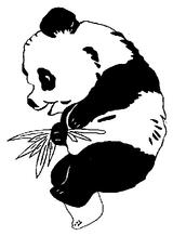 Imprimer le coloriage : Panda, numéro 104584