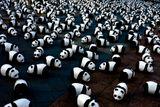 Imprimer le dessin en couleurs : Panda, numéro 108793