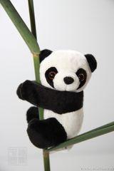 Imprimer le dessin en couleurs : Panda, numéro 108795