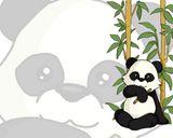 Imprimer le dessin en couleurs : Panda, numéro 108823