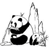Imprimer le coloriage : Panda, numéro 368702