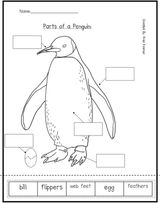 Imprimer le coloriage : Pinguoin, numéro 3df9dbeb